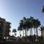 Palmer och blå himmel ger ny energi