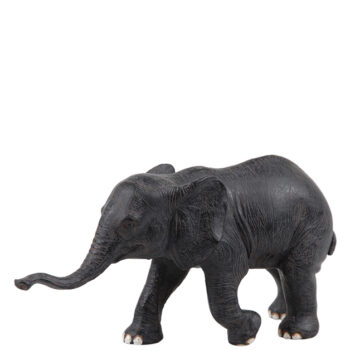 elefant baby dark brown