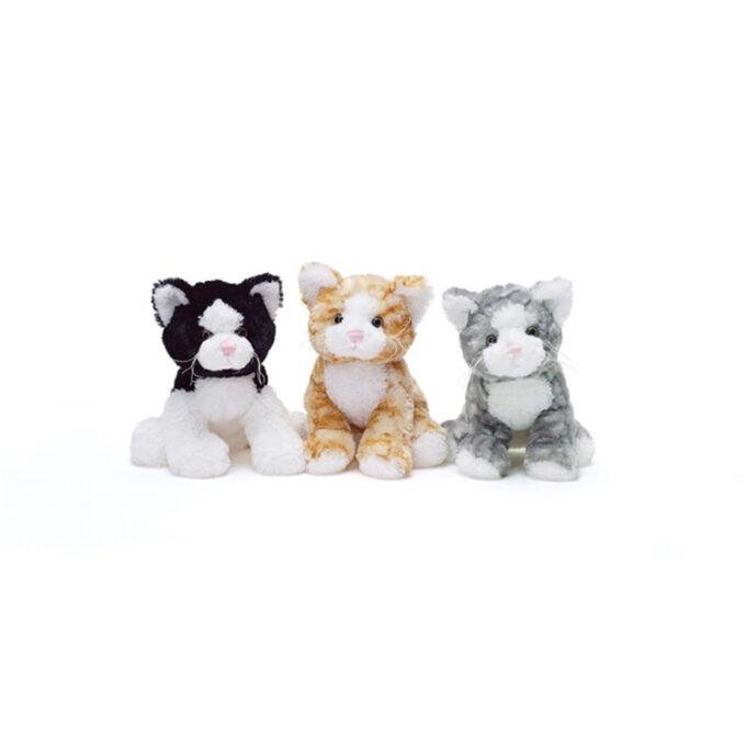 Teddy cats